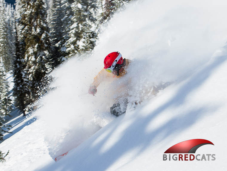 Reserve your Powder Guarantee at Big Red Cats